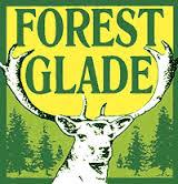 forest - glade
